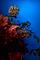 Bild Nr. 12952 — Mader, Ohne Titel (Farbkomposition)