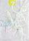 Bild Nr. 14849 — Fink, Herbstblattkindergeist