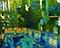 Bild Nr. 17704 — Klose, Global art und luxuary: Amazonasfischer, Pool Hotel Emerald Palace Kempinski Dubai