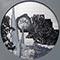 Bild Nr. 17709 — Klose, Tondo global: Urwald Zentralamazonas (Vollmond)
