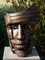 Bild Nr. 6744 — Stilling, African King