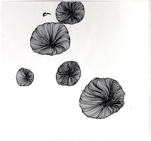 Bild Nr. 13051 — Ulrike Michaelis (1958-2015): Quallen (um 2001)