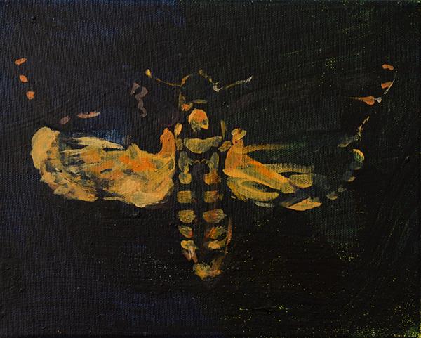 Bild Nr. 17717 — Robert Weissenbacher (*1983): Nachtschwärmer (2020)